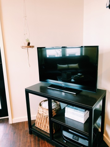 A Well Organized TV Stand